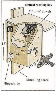 Nighttime Shelter for Winter Birds - Bird Roost Plan Two - Birdhouses and feeders - Bird Supplies Bird House Feeder, Diy Bird Feeder, Bird Feeder Plans, Bird Houses Diy, Homemade Bird Houses, Bird Aviary, Birds And The Bees, Bird Boxes, Nesting Boxes