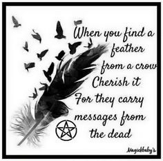 feather from a crow Black Feather Meaning, Finding Feathers, Crow Feather, Witchcraft For Beginners, Native American Symbols, Wiccan Spells, Green Witchcraft, Spirit Guides, Book Of Shadows