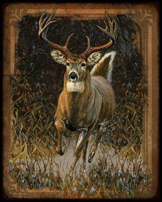 Whitetail Deer Painting
