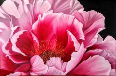 60x90 Yağlıboya Şakayık çiçeği
