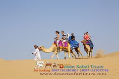 #Camel #riding is one of the major attraction of #dubai #desert #safari #tour. call 00971502661837 for booking