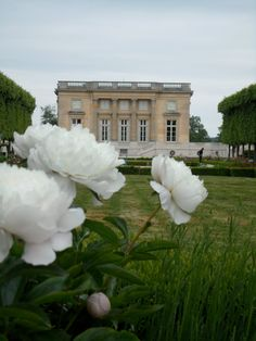 Le Petit Trianon. Hitting myself for being lazy and not walking to this...