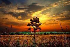 Russia Sunset