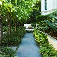 37 Beautiful Garden Pictures For You Get Basic Engineering, Home Design & Home Decor. Beautiful Garden Pictures For YouGreen colours are great for human eyes and offer m Back Gardens, Small Gardens, Outdoor Gardens, Modern Garden Design, Landscape Design, Green Landscape, Landscape Architecture, Architecture Design, Contemporary Planters