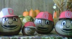 Ohio State Brutus Buckeye Pumpkins