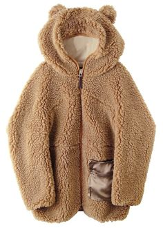 warm bear