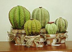 Risultati immagini per cactus aloe vera tela