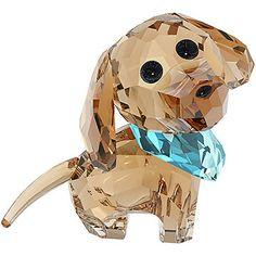 Puppy – Milo (ダックスフンド)