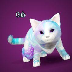 Sims 3 Pets - Generation 16 Cat Spares - Part 2/4