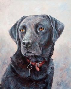 Head and Shoulders of a black Labrador. On deep boxed canvas, painted around the edges.