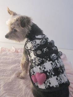 Tink in her Chanel from Little Prince and Piggy from NYC.