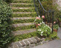 Zakomponovaná schodiště a rampy