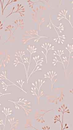 rose gold wallpaper backgrounds phone wallpapers w - Cute Wallpaper Backgrounds, Wallpaper Iphone Cute, Cellphone Wallpaper, Flower Backgrounds, Pretty Wallpapers, Aesthetic Iphone Wallpaper, Flower Wallpaper, Aesthetic Wallpapers, Wallpaper Powerpoint