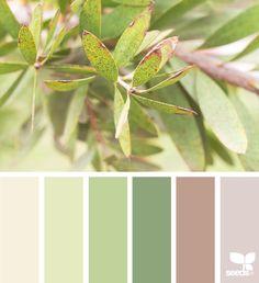 { nature tones } - https://www.design-seeds.com/in-nature/nature-made/nature-tones-12