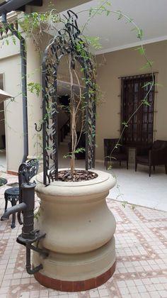 Aljibe en patio antiguo. Asunción-Paraguay