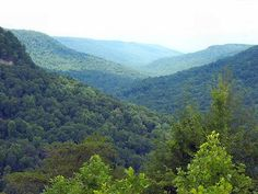 Picture of God's Creations.. Beautiful Mountain's in Pikeville, KY