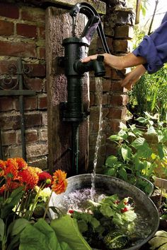 Pompe à eau rétro pour arroser vos plantes