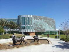 University of South Florida Tampa Campus