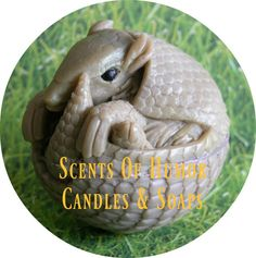 ARMADILLO Soap - Animal Home Decor Unique Highly Detailed Gift Soap - Scented - Handmade In USA - Detergent Free Glycerin Soap by SCENTSOFHUMORCANDLES on Etsy