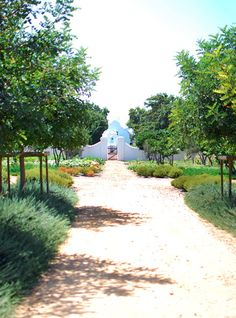 Babylonstoren <br> South Africa's rural oasis offering a garden of earthly delights Romantic Vacations, Best Vacations, Greenhouse Restaurant, Farm Landscaping, Dutch Gardens, Cape Dutch, Farm Gate, Garden Of Earthly Delights, Country Hotel