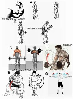Complete Biceps Workout!