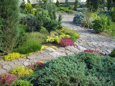 Сад Кобец Ольги – проект «Замечательные сады» / ПРОФСАД