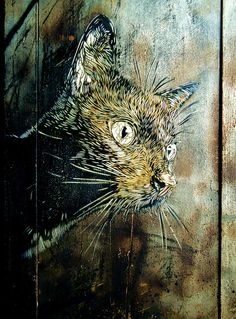 C215 If Van Gogh had a cat (but i don't want to reaearch whether he had a damn cat at 2 in the a.m.)