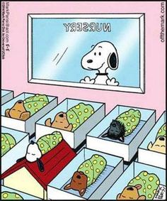 Snoopy a daddy?!