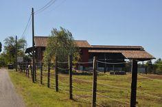 Podere Casa Chierica - Azienda
