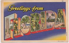 Greetings from Florida, large letter vintage postcard