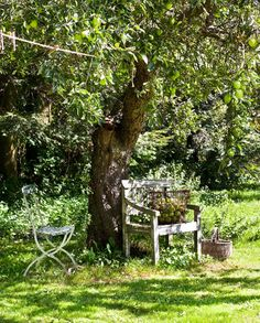 as simple as a bench under the old apple tree via @Vakrehjem.com