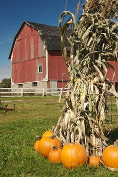 love red barns and fall.