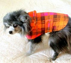 Fleece Small Dog's Coat Neon Orange, Fuchsia and Crown Plaid with Collar Yorkie http://www.etsy.com/listing/161954244/fleece-small-dogs-coat-neon-orange?ref=teams_post