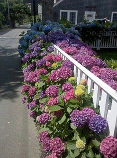 Gorgeous 65 Front Yard  Privacy Fence Remodel Ideas on A Budget https://insidedecor.net/23/65-front-yard-privacy-fence-remodel-ideas-budget/