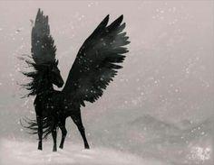 Black pegasus. Silouette would look good as a tatt.