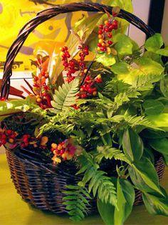 Fall Indoor Basket Garden with Recipe / Pike Nurseries
