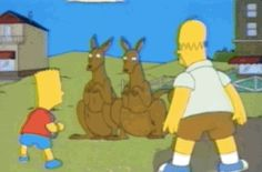 Australians don't actually ride around in kangaroos.