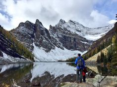 Tips to see the beautiful fall larches of Banff, while avoiding crowds | Calgary…Canadian Rockies| Lake Louise