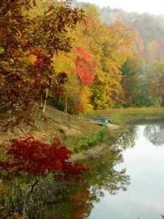 Cuddle Up Cabin Rentals, Blue Ridge Georgia.  Fall in the North Georgia Mountains.  Simply beautiful!!!!