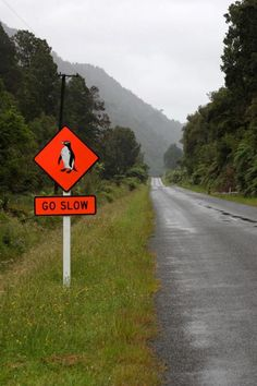 The road to Jackson's on the Haast Pass route New Zealand. One day a road will connect from the south from Te Anau and the stunning Southern Scenic Route.