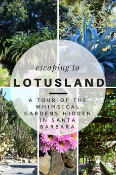 CALIFORNIA ~ Santa Barbara, Ganna Walska Lotusland, a secret, magical garden hidden in the Montecito foothills. 37 acres with more than 3000 subtropical and tropical plants from around the world. Santa Barbara California, California Dreamin', Travel Usa, Travel Tips, Travel Destinations, Day Trips, Weekend Trips, Travel With Kids, Outdoor Travel