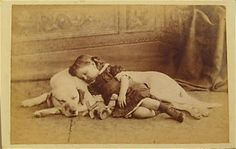 Yes, they both have their eyes closed but they are not dead. This is a sweet napping photo. If a Victorian was going to do a Memento Mori of their child, it would not be so undignified as to be lying on the floor with her head on the dog. There's a good chance the child is pretending to sleep for the camera.