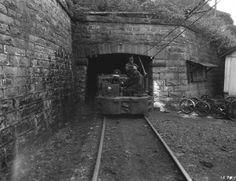 Elkhorn Coal & Coke