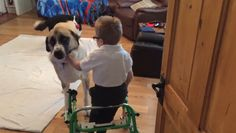 Boy and dog with special needs form great bond.
