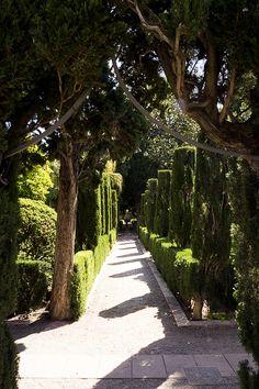 Jardin Monforte Valencia