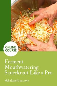 Learn to ferment homemade sauerkraut like a pro in no time, enjoy eating flavorful sauerkraut, and reap the benefits of improved digestion. This program includes videos, slide shows, text delivery, PDFs, step-by-step recipe card decks, and Zoom calls for additional support! #probiotics Fermented Sauerkraut, Homemade Sauerkraut, Fermented Cabbage, Sauerkraut Recipes, Fermented Foods, Reap The Benefits, Recipes For Beginners, Recipe Cards, Vegetable Recipes