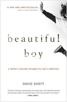 Beautiful Boy: A Father's Journey Through His Son's Addiction by David Sheff, http://www.amazon.com/dp/0547203888/ref=cm_sw_r_pi_dp_VA1psb1TEWBJC