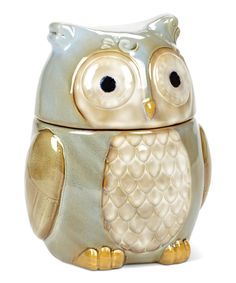 Turquoise Owl Canister By Abbott #zulily #zulilyfinds