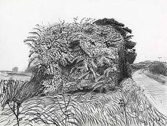 Resultado de imagem para david hockney drawings
