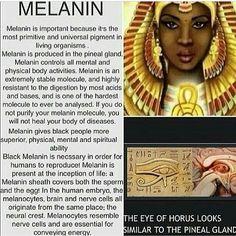 Melanin (Part 2)